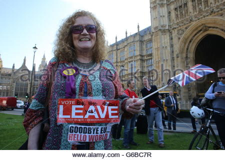Westminster, London, UK. 24th June, 2016. Westminster, London, UK. 24 June, 2016.A Happy Leave campaigner celebrates - Stock Photo