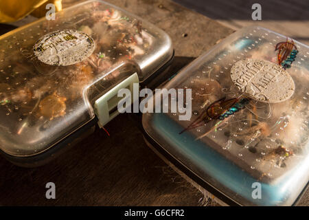 Saltwater flies in box, Cuba. - Stock Photo