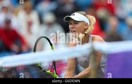 Caroline Wozniacki of Denmark playing Samantha Stosur of Australia during the The Aegon International at Devonshire - Stock Photo