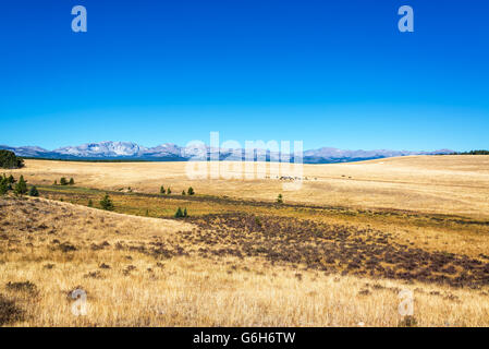 Dry fields with the Bighorn Mountains visible in the background near Buffalo, Wyoming - Stock Photo