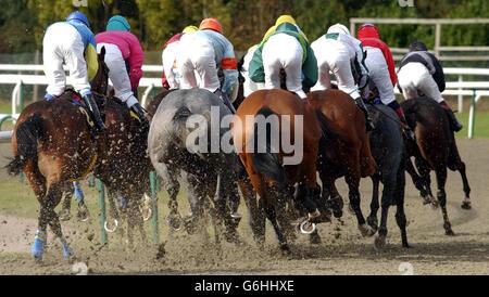 Lingfield races - Stock Photo