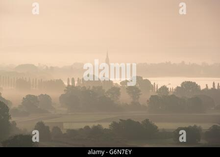 Germany, Constance district, Lake Constance, Radolfzell, View to Radolfzeller Aachried in the morning, fog - Stock Photo