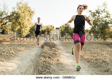 Two athletes running in olive orchard - Stock Photo