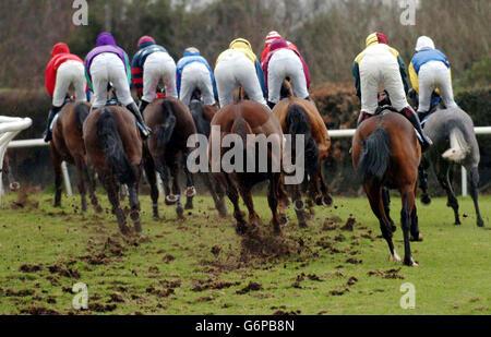 Fontwell Racing - Stock Photo