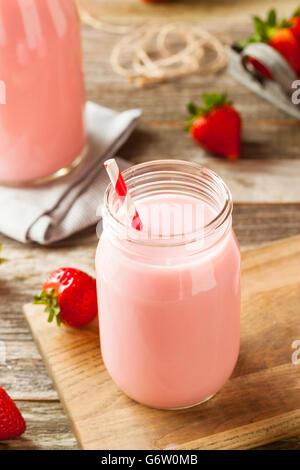 Homemade Organic Strawberry Milk Ready to Drink - Stock Photo