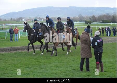 Horse Racing - 2014 Cheltenham Festival - Champion Day - Cheltenham Racecourse - Stock Photo