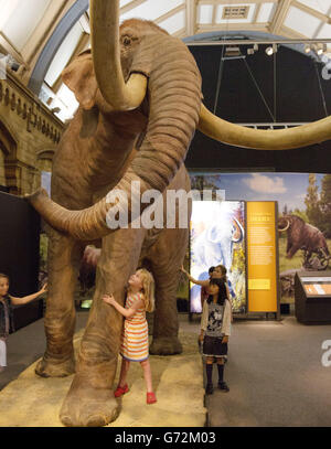 Columbian Mammoth in the Mammoths: Ice Age Giants exhibition - London - Stock Photo