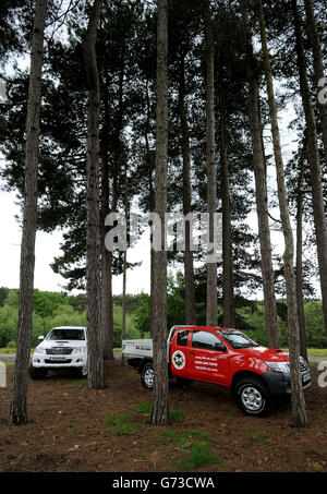 Toyota Fleet handover to SG HLX - Stock Photo