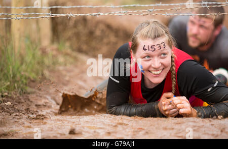 Tough Mudder, Kiss of Mud obstacle girl crawling on hands and knees through mud - Stock Photo