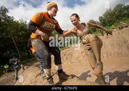 Tough Mudder a helping hand over the Mud Mile obstacle Drumlanrig Castle, Dumfries and Galloway, Scotland, UK. - Stock Photo