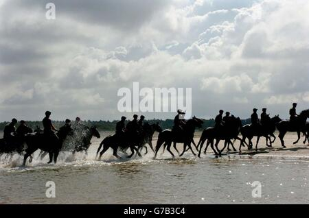 Household Cavalry Mounted Regiment Training Wing - Stock Photo