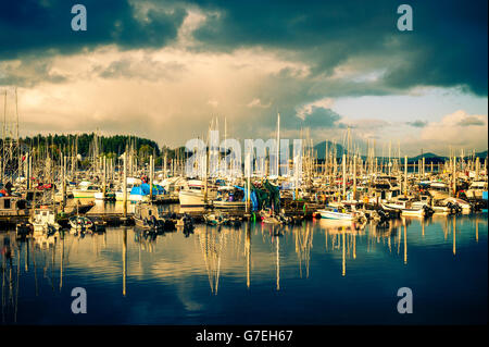 Thomsen Harbor lit up by late afternoon sunshine in Sitka, Alaska, USA. - Stock Photo