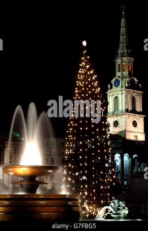 Customs and Traditions - Christmas Tree - Trafalgar Square - Stock Photo