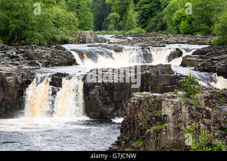 Rough columns and vertical cracks at Low Force waterfall, Teesdale, County Durham, England, UK - Stock Photo