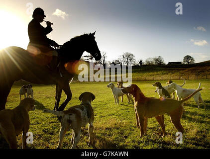 Buccleuch hunt - Scottish Borders - Stock Photo
