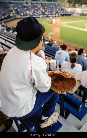 A young boy with his open baseball glove awaits expectantly in the spectator stands for a foul fly ball that he - Stock Photo