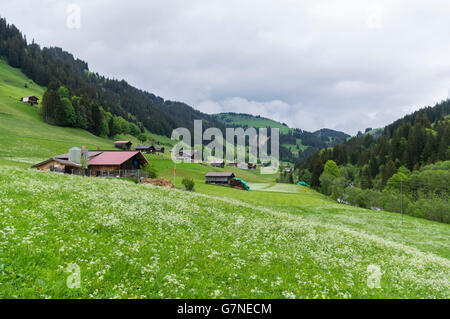 Turbach, a hamlet in Turbach valley, close to Gstaad, Switzerland. Farmhouses and meadows against a mountain backdrop. - Stock Photo
