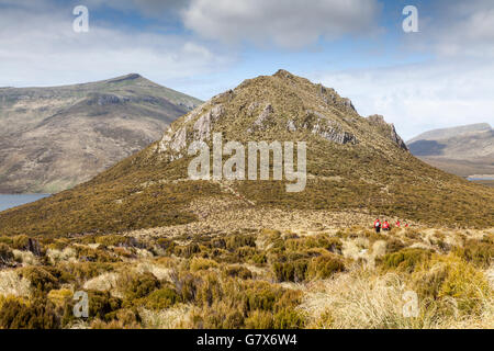 Expedition ship passengers hiking on Campbell Island, New Zealand sub-Antarctic - Stock Photo