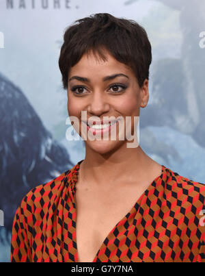 Hollywood, California, USA. 27th June, 2016. Cush Jumbo arrives for the premiere of the film 'The Legend of Tarzan' - Stock Photo