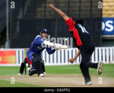 Cricket - Totesport National Cricket League - Division Two - Warwickshire Bears v Kent - Edgbaston - Stock Photo