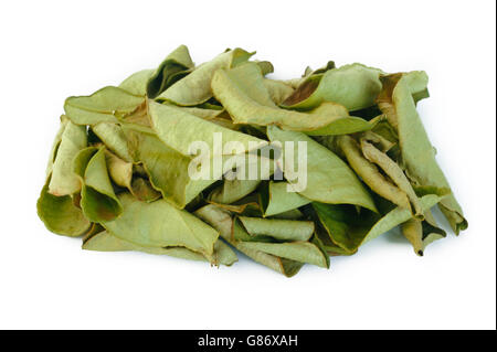 dried bergamot leaves on white background - Stock Photo