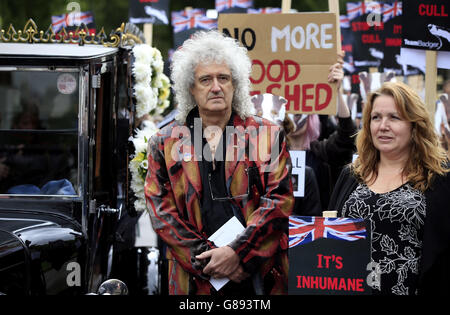 Badger cull protest - Stock Photo