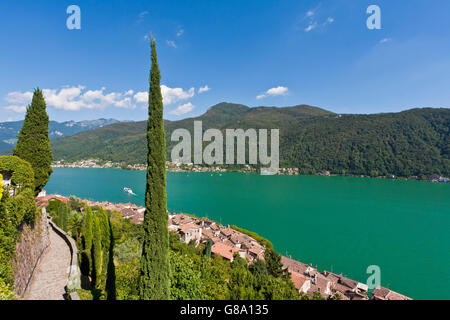 View over Morcote towards Lake Lugano, Cypress (Cupressus), Lago di Lugano, Ticino, Switzerland, Europe - Stock Photo
