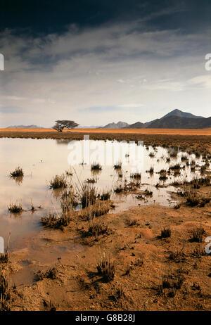 Angola, Pan Iona National Park - Stock Photo