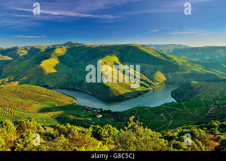 Portugal: Spectacular view of river Douro in the afternoon light - Stock Photo