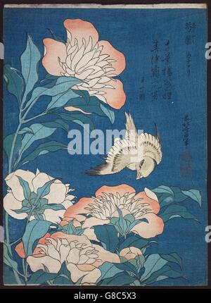 Katsushika Hokusai, published by Nishimuraya Yohachi (Eijudō) - Peonies and Canary - Stock Photo