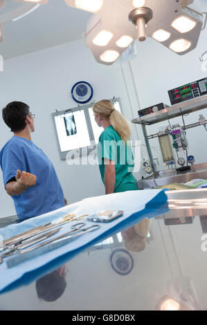 Veterinary surgeon and nurse looking at an x-ray. - Stock Photo