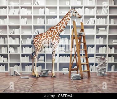 an giraffe baby  in the room with book shelves. Creative concept - Stock Photo