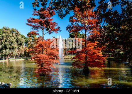 Scenic View Of Park Lake Trees and Fountain Against Clear Sky - Stock Photo