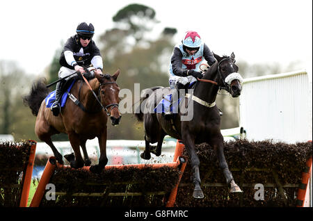 Fontwell Racecourse - Autumn Raceday - Stock Photo