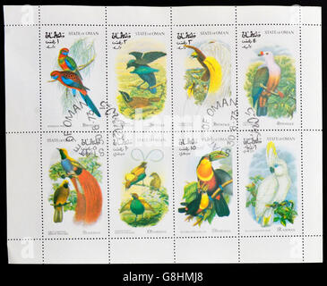 OMAN - CIRCA 1973:  A collection stamps printed in Oman shows a series of eight drawings of exotic birds, circa - Stock Photo
