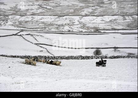Winter weather Jan 14th 2016 - Stock Photo
