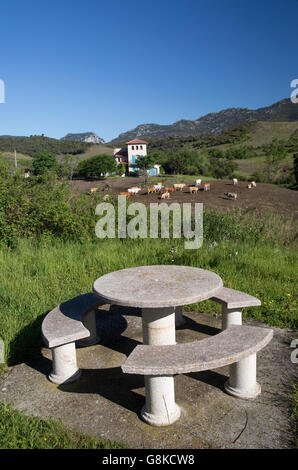 Charmant Copy Space; Round Stone Picnic Table And Seats In Rest Area Blue Sky Small  Farm Cows No People