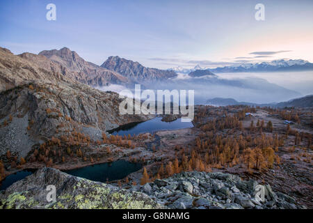 Sunrise on Matterhorn and Monte Rosa Natural Park of Mont Avic Aosta Valley Graian Alps Italy Europe - Stock Photo