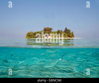 Half underwater view of an Island in the Maldives - Stock Photo