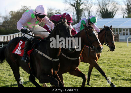 Punchestown Festival - Day Four - Ladbrokes Champion Stayers Hurdle Day - Stock Photo