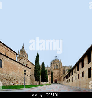 The cathedral of Salamanca. The old city of Salamanca is an Unesco World Heritage site. - Stock Photo