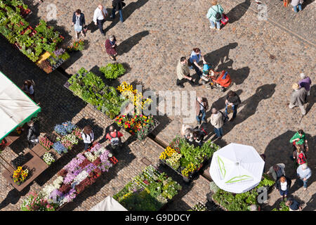 Weekly market on the Muensterplatz cathedral square, Freiburg im Breisgau, Black Forest, Baden-Wuerttemberg - Stock Photo