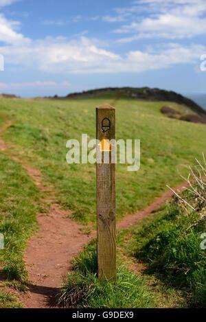 Waymarker post along the South West Coast Path near Sharkham Point. - Stock Photo