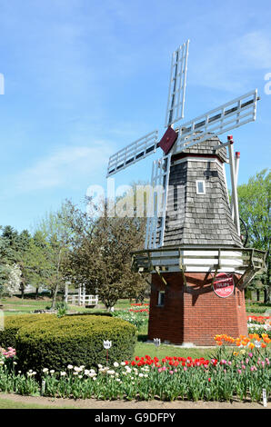 Windmill at Veldheer farm during tulip time festival in Holland, Michigan - Stock Photo