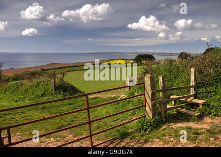 View towards Start Point from a gateway near Little Dartmouth. (Processed as an HDR image). - Stock Photo