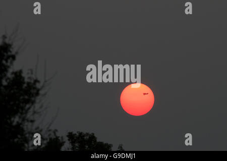 A bi-plane flies across the Indiana setting sun. - Stock Photo