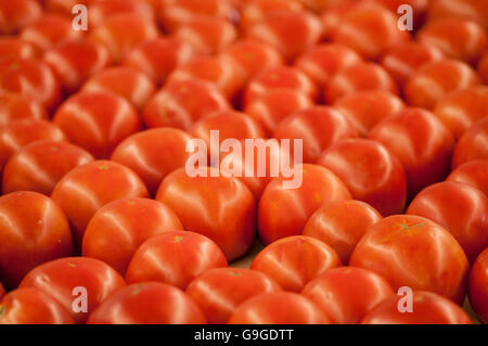 Freshly harvested  tomatoes at a farm stand. - Stock Photo