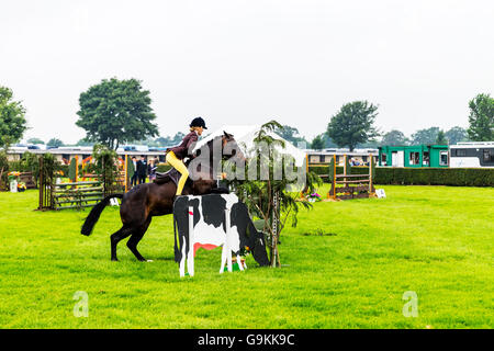 Horse jumping jump over obstacle gymkhana young girl riding horse over fence jump at show UK England GB - Stock Photo