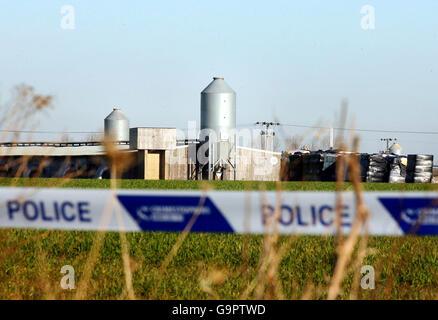 Suspected outbreak of bird flu at Turkey farm - Stock Photo