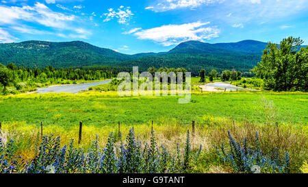 The Nicola River winding through the green valley and farmlands near Merritt in British Columbia, Canada - Stock Photo